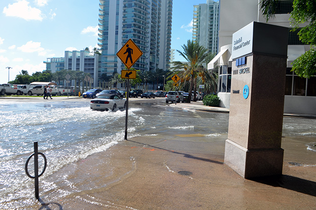 flooding, sea level rise, sunny day, high tide, king tide, Miami