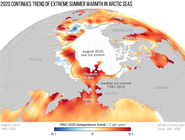 Spherical map of Arctic Ocean temperature trends in August