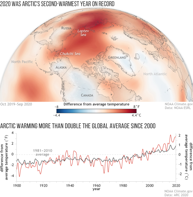 Spherical map of the Arctic showing surface temperature anomalies in 2020