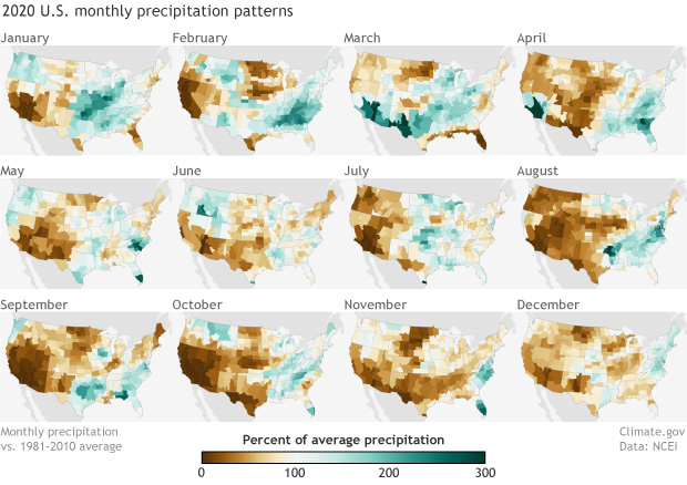 Rows of small monthly maps of U.S. precipitation anomalies 2020