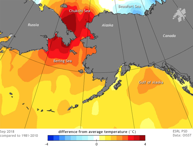 Map of North Pacific and Bering Strait area showing warm ocean conditions in September 2018