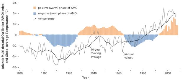 AMO and temp graph