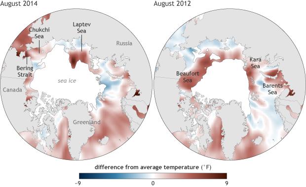 Sea surface temperature anomaly composite