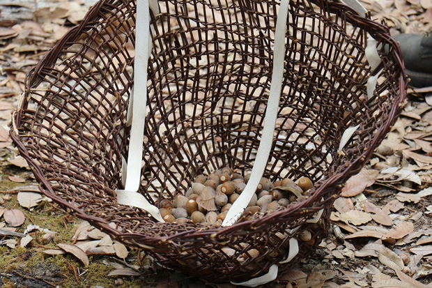 Photo of a completed Karuk traditional acorn basket