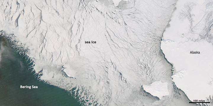 edge of sea ice pack in the Bering Sea