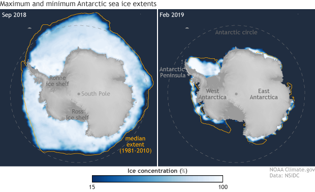 Maps of Antarctica and Southern Ocean showing sea ice concentration in Sep 2018 and Feb 2019