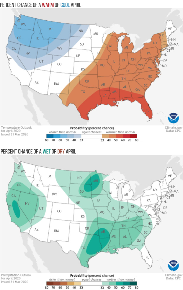 Temperature and precipitation outlook maps for the CONUS for April 2020