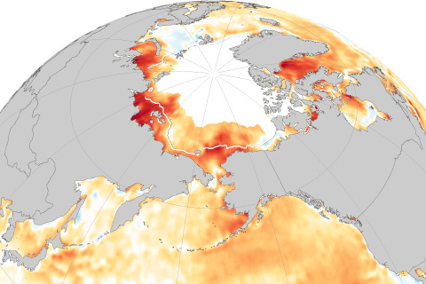 Sea surface temperature anomaly map for the Arctic