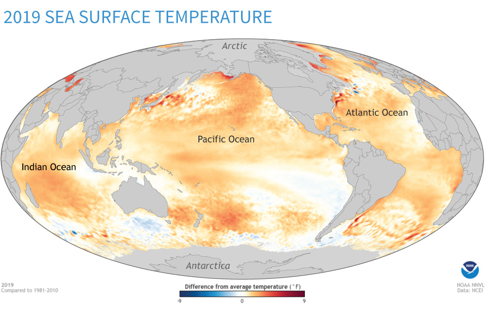 2019 sea surface temperature anomaly