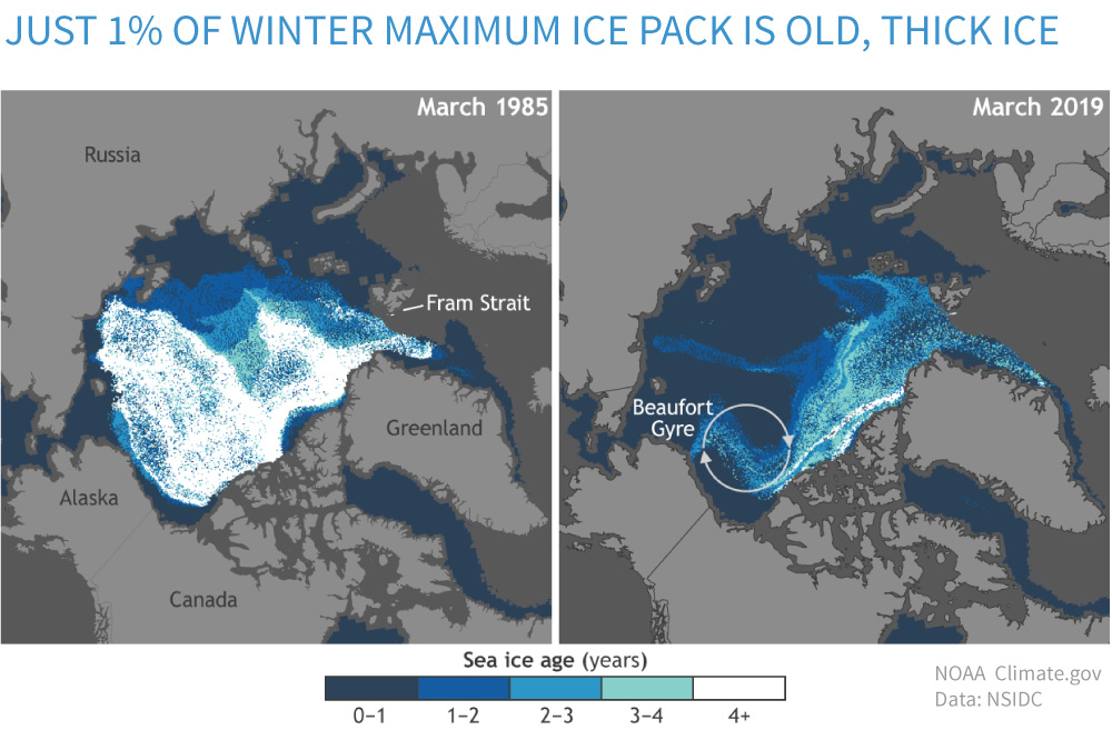 maps of the Arctic showing the relative amount of very old ice in March 1987 versus 2019