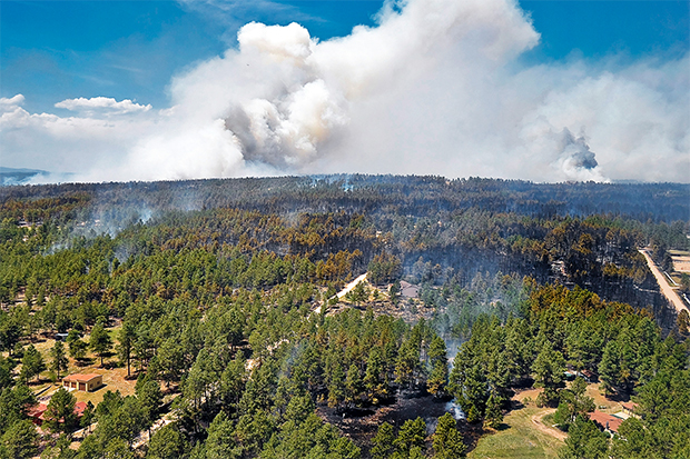 [Photo] Black Forest Fire