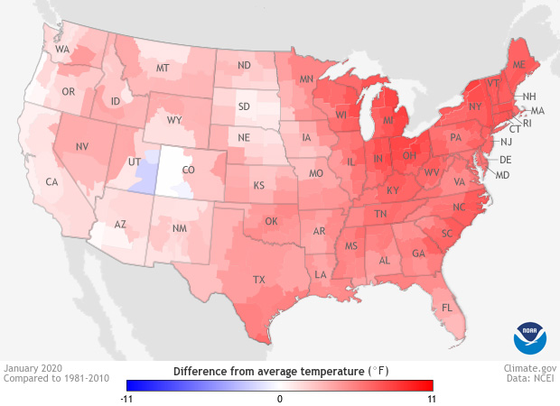 map of the CONUS showing January 2020 temperature patterns compared to the 1981-2020 average in red and blue colors