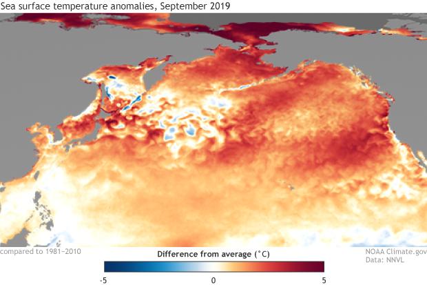 September SST anomalies