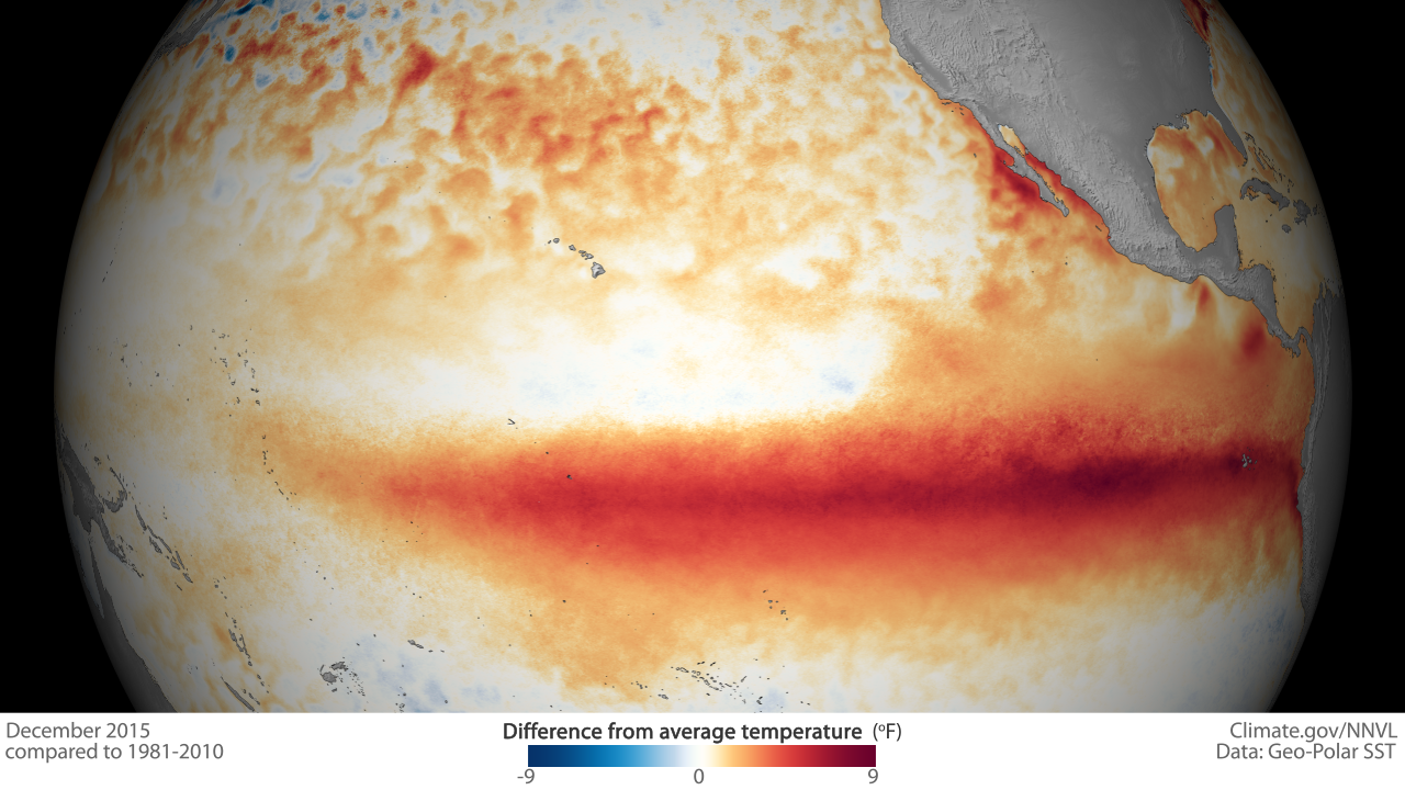 Map of sea surface temperature anomalies, highlighting the equatorial Pacific Ocean