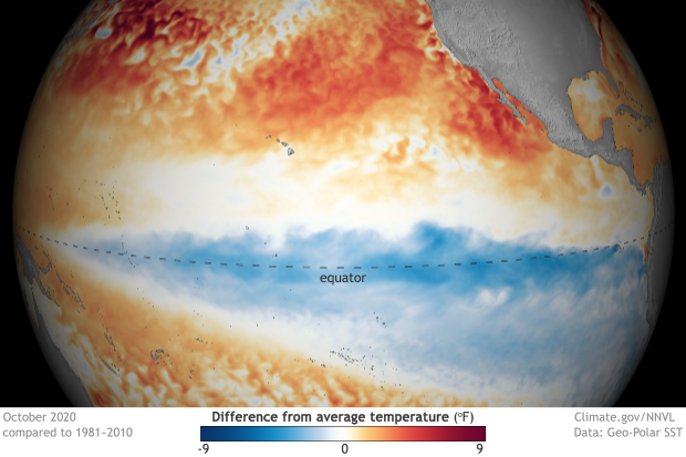 spherical map of the Pacific centered on the equator showing surface temperatures compared to average in October 2020
