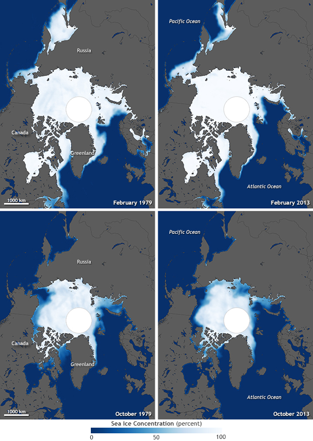 Arctic Sea Ice 1979 to 2013