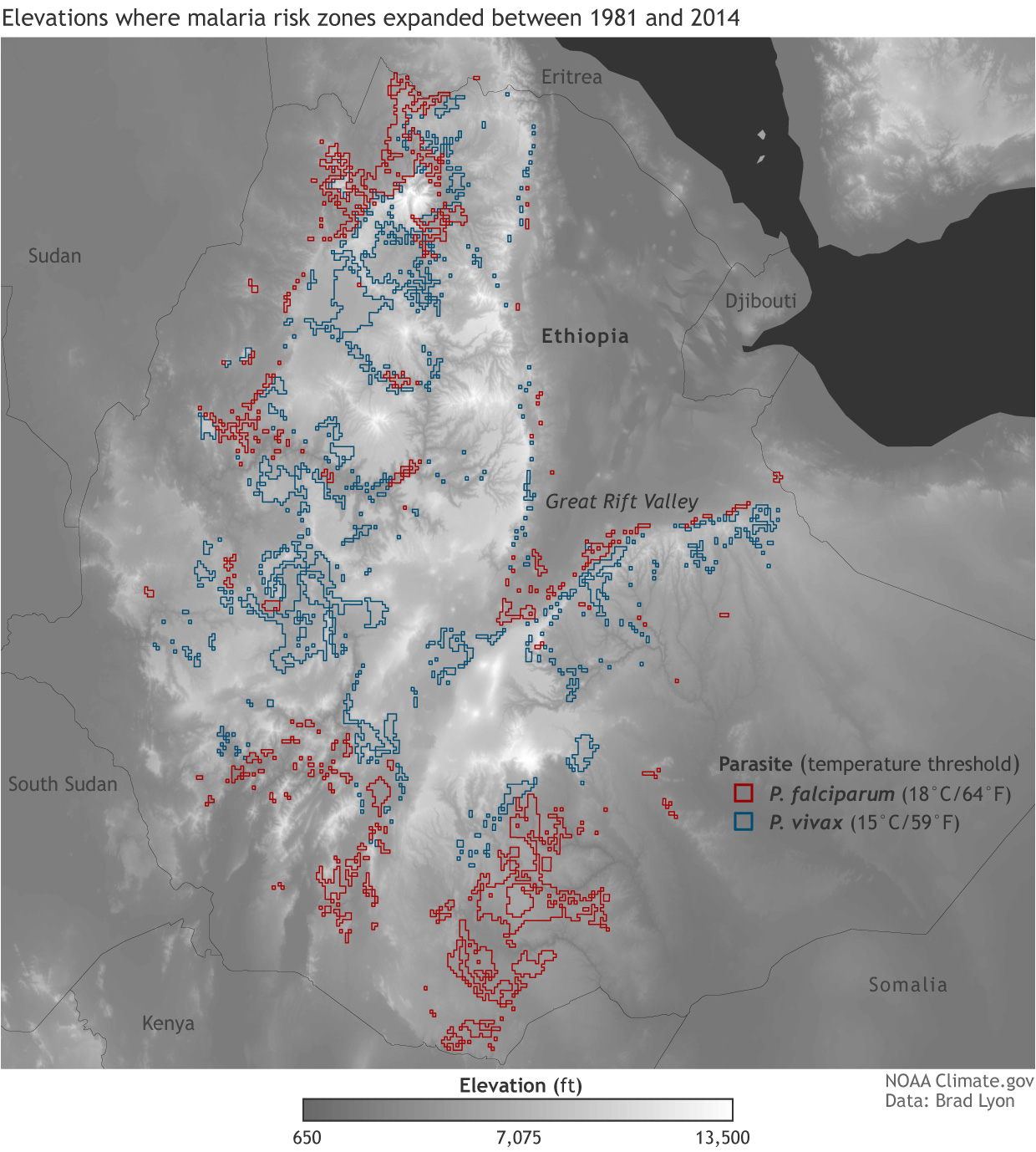 Malaria risk zones expand to higher elevations in ethiopian ethiodemmalaria1240g gumiabroncs Images