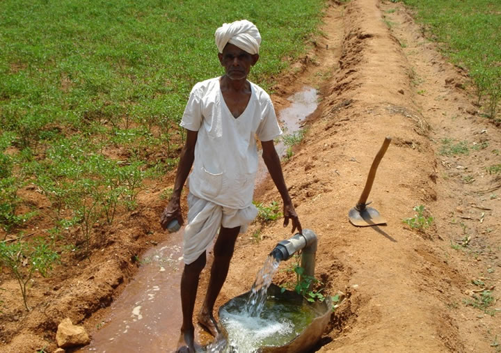 Photo of farmer standing near tube well