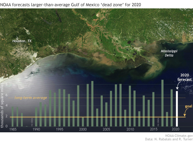 Satellite image of Gulf of Mexico with bar graph of dead zone area as an overlay