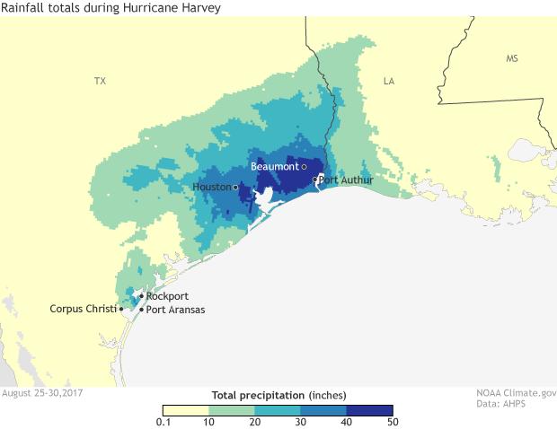 rainfall, harvey, hurricane, texas
