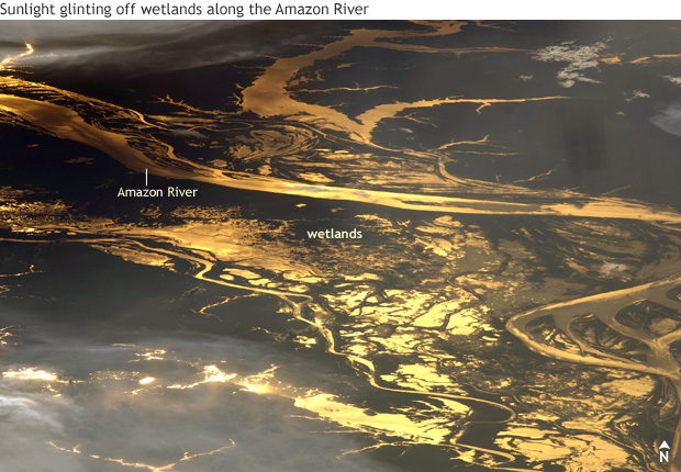 photo of sunglint off the Amazon River and adjacent wetlands with the water surfaces appearing golden and copper and the dry land appearing dark