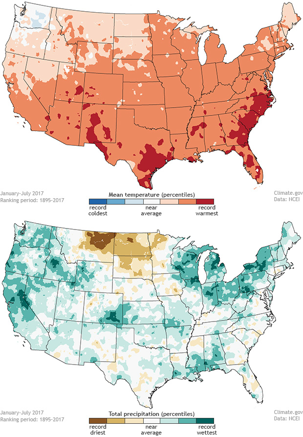 year to date january july 2017 temperature and precipitation ranks for the contiguous united states noaa climate gov maps adapted from ncei originals