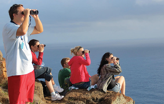 A small group of people perched on a rock looking through binoculars as part of a citizen-science, whale-watching effort