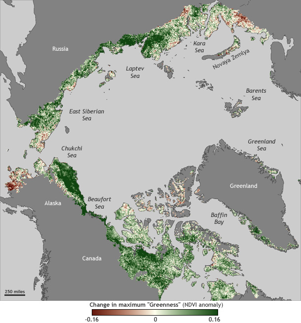 map of changes in vegetation greenness around the Arctic