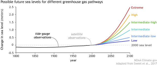 graph of observed and projected sea level rise from 1900-2100