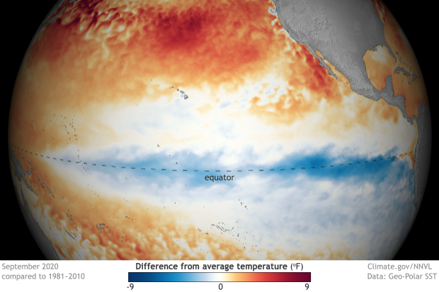 spherical map of the Pacific centered on the equator showing surface temperatures compared to average in September 2020