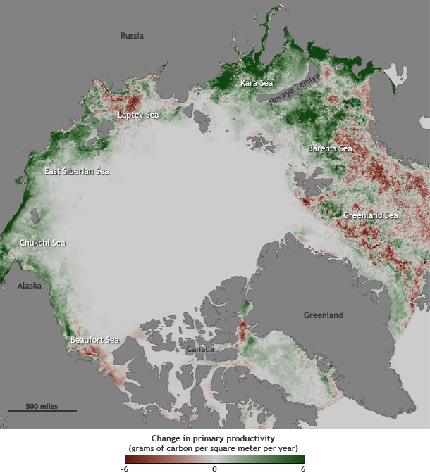 map of long-term changes in primary productivity in Arctic basin