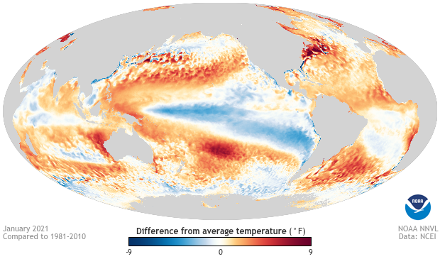 Global map of ocean surface temperatures in January 2021 compared to the 1981-2010 average