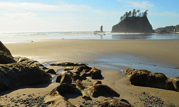 a beach in the Pacific Northwest at low tide with an isolated, tree-topped bounder in the distance