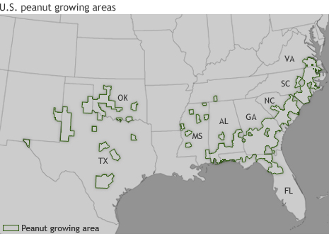 U.S. Map showing counties where farmers grow peanuts as of 2007.