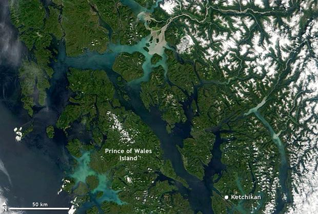 Photo-like satellite image of Alaska's southeast coast near Prince of Wales Island