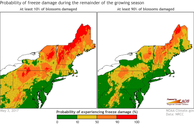MAP: Probability of freeze damage to apples as of May 3, 2017