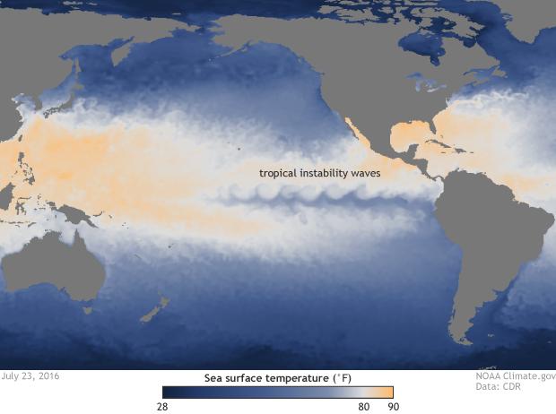 Sea surface temperature July 23 2016
