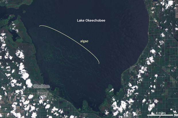 Sentinel2b, satellite, Lake Okeechobee, Florida, algal bloom