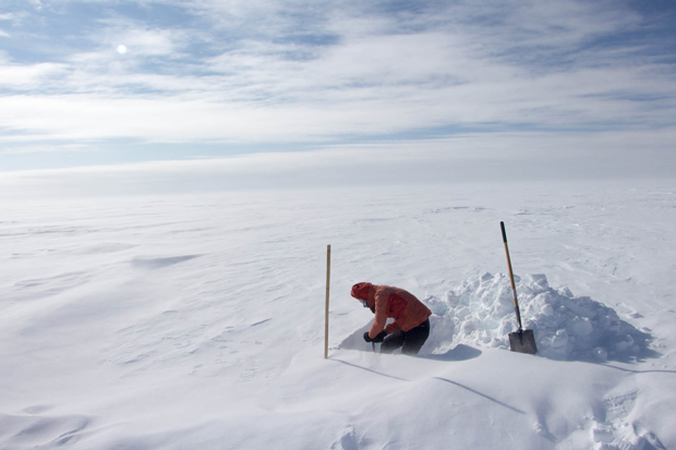 Greenland, Snow, Ice, Black Carbon