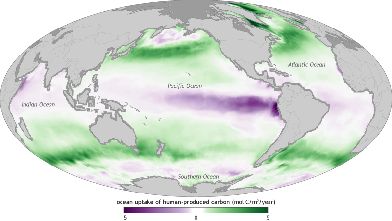 map of net anthropogenic carbon uptake and release in the global ocean in 2017