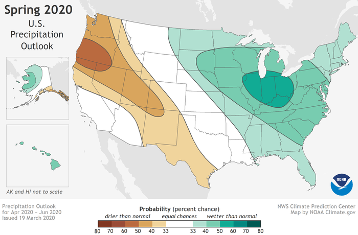Map showing percent chance of above (green) or below (brown) normal precipitation for the U.S. in spring 2020.