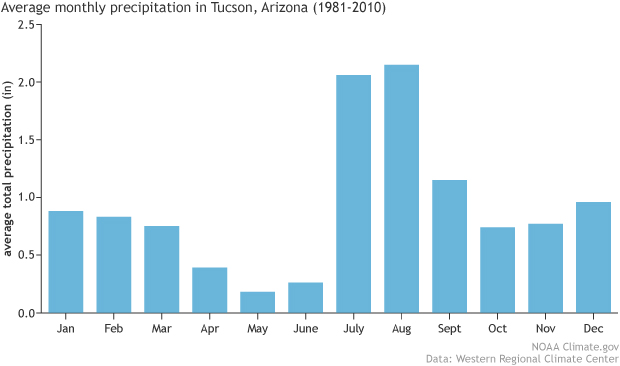 rainfall, climatology, Arizona, Tucson