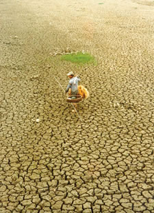 Photo of farmer in dry, cracked field