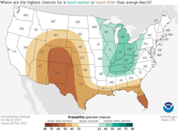 March 2021, Precipitation Outlook