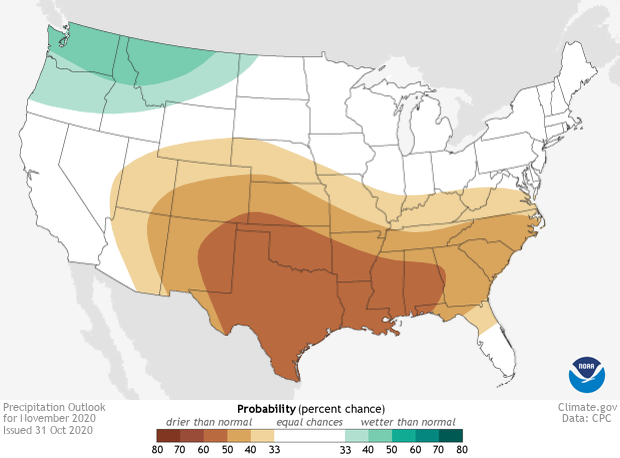 Precipitation, Outlook, November, 2020
