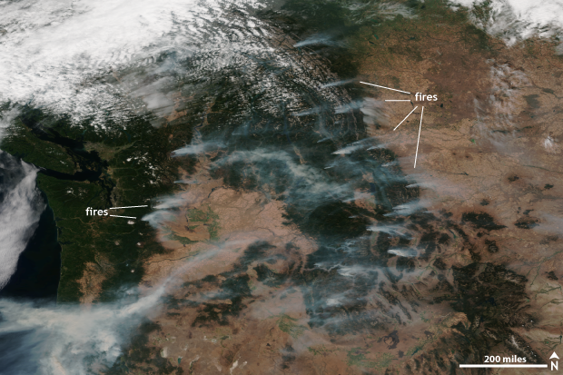 Satellite, VIIRS, wildfire, Pacific Northwest, West