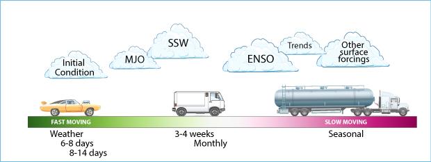 Forecasting fast versus slow cartoon