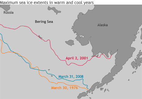 Map of spring ice extents in the Bering Sea