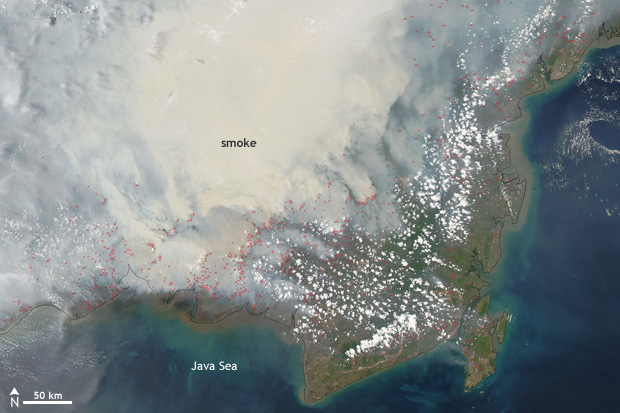 satellite image of smoke and fires over Indonesia Borneo