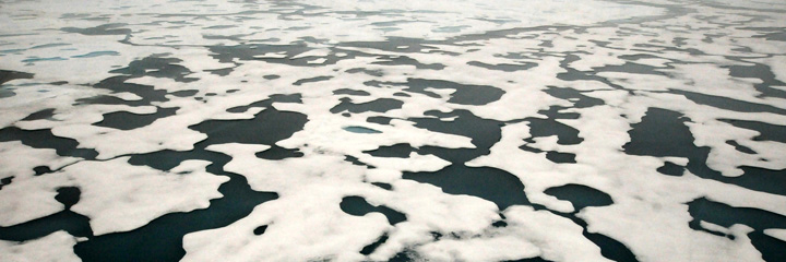Photo of shallow melt ponds on sea ice pack